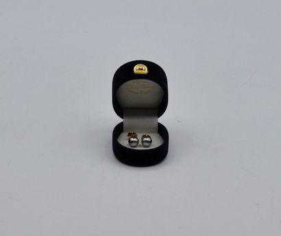 Paire de clous d'oreilles en or 750 millièmes centrée d'une perle de Tahiti.  Poids...