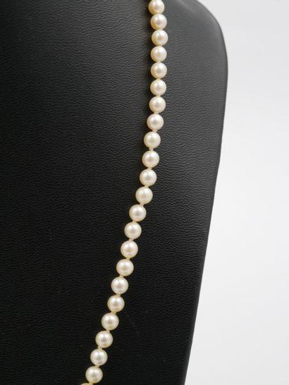 Collier de 89 perles de culture en chute, le fermoir en or jaune 750 millièmes  Long...