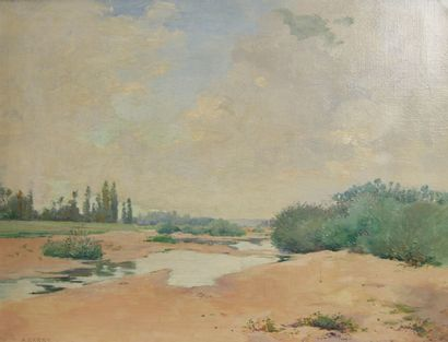 Albert DARDY (fin XIXème début du XXème siècle)  Les marécages  Huile sur toile...