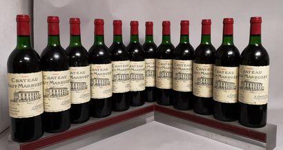 12 bouteilles Chateau HAUT MARBUZET - Saint...