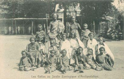 9 CARTES POSTALES ETHNOGRAPHIE : Jardin Zoologique...