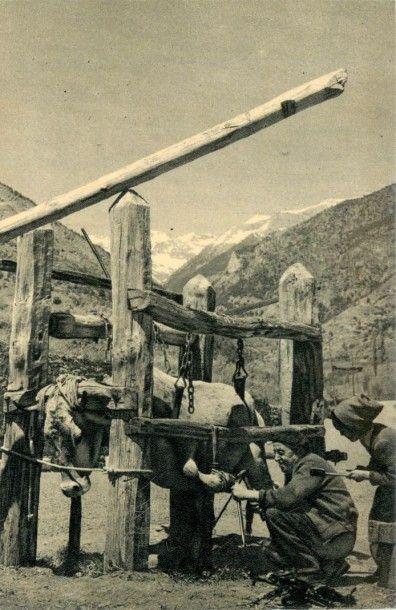 135 CARTES POSTALES ETRANGERS : Andorre,...