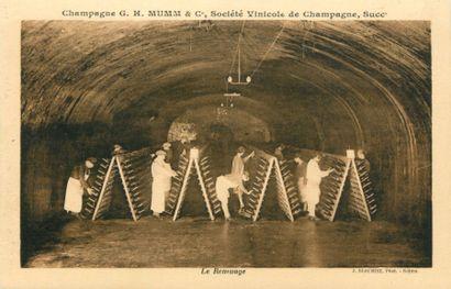 69 CARTES POSTALES LE CHAMPAGNE : Divers...