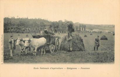 171 CARTES POSTALES ENSEIGNEMENT : Yvelines...