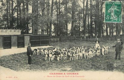 25 CARTES POSTALES CHASSE A COURRE : Divers...