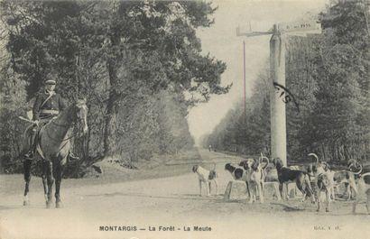 28 CARTES POSTALES LOIRET : Villes, qqs villages,...