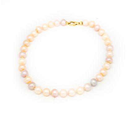 Collier de 35 perles de rivière rosées et...