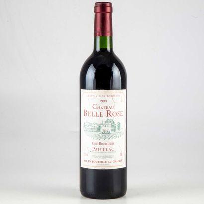 1 bouteille CHATEAU BELLE ROSE 1999 Pauillac...