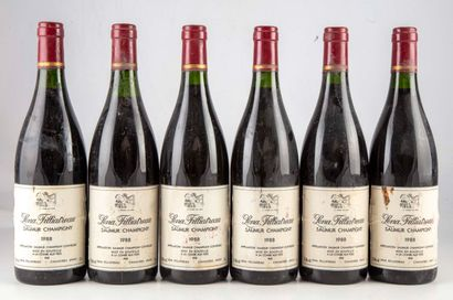 6 bouteilles Saumur Champigny 1988 Lena Filliatrau...