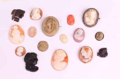 SET of shell cameos, agate, lava stone, composition,...