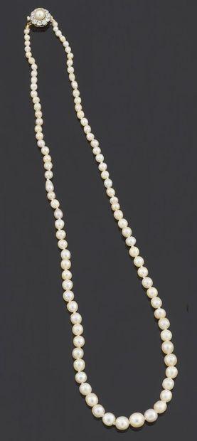 Collier de quatre-vingt-quatorze perles fines...