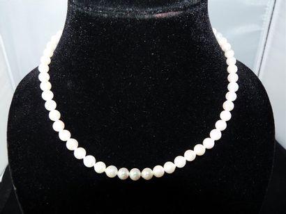 COLLIER de cinquante-huit perles de culture...