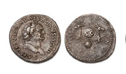19 DENIERS VARIÉS. Vespasien - Domitien -...