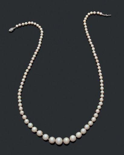 COLLIER d'un rang de 89 perles en chute,...