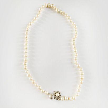Collier d'un rang de perles de culture choker,...