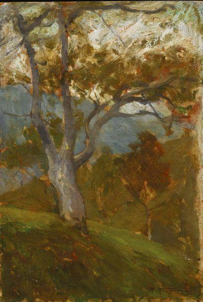 Pietro Fragiacomo (Trieste 1856 - Venezia 1922)