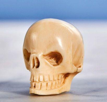 Lot composé de trois crânes : - Crâne en ivoire sculpté avec réseau veineux. XIXe...