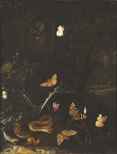 MATHIAS CALZETTI WITHOOS (AMERSFOORT 1627 - HOORN 1703)