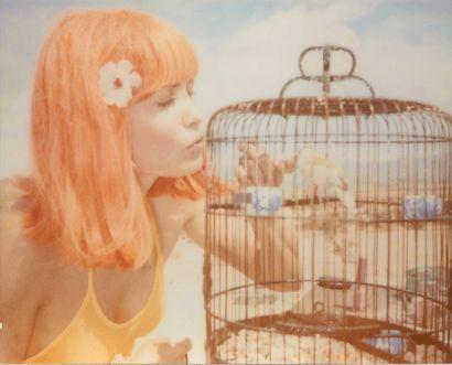 **STEFANIE SCHNEIDER (NÉE EN 1968) Sans titre Ensemble de 2 color print. Set of 2...