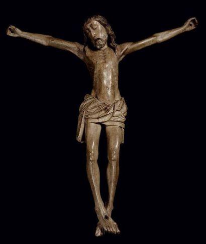 CHRIST en tilleul sculpté et polychromé....