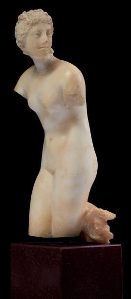 VÉNUS MÉDICIS. Statuette représentant Vénus...