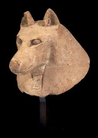 Égypte BOUCHON DE VASE CANOPE. Bouchon à l'effigie du chacal Douamoutef, les oreilles...
