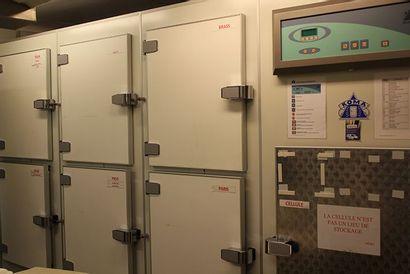Importante armoire de surgélation Koma Mono...