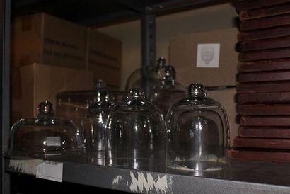 Lot de 16 cloches en verre
