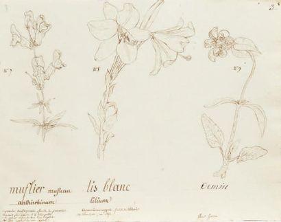 CLAUDE-NICOLAS THÉODORE PERRET (? 1784-? 1832)