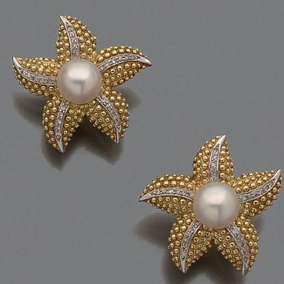 Paire de clips d'oreilles «étoiles de mer»...