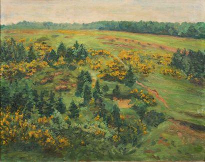 HENRI OTTEVAERE (1870-1944) Paysage près de Faulx-les-Tombes Huile sur panneau Signée...