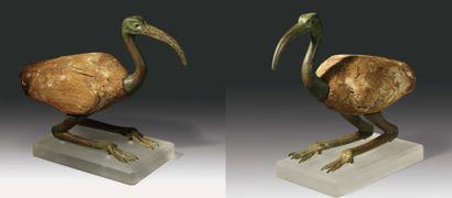 Grande statuette votive représentant un ibis....