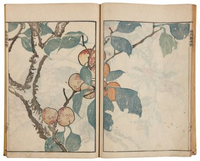 Bumpo dit Kimpaen - Bumpo Kawamura (1779-1821)