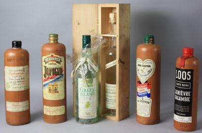 6 Bouteilles ALCOOLS ETRANGERS DIVERS : 4 Alcools divers du Pays Bas flacons en...