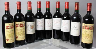 9 Bouteilles VINS ROUGES DE BORDEAUX : 3...