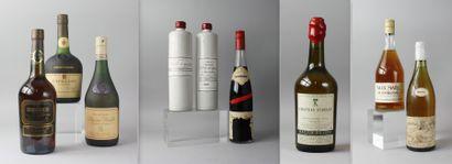 * 9 Bouteilles ALCOOLS DIVERS : 1 EAU DE...