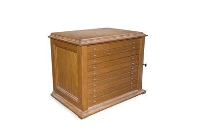 Médailler en bois naturel à 10 tiroirs. H_38...