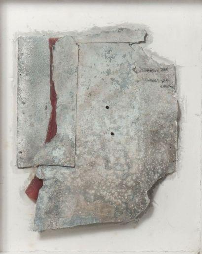 CAMIEL VAN BREEDAM (né en 1936)