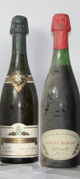 Lot de 2 bouteilles VINS NATURE de CHAMPAGNE...