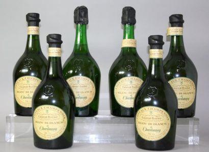 6 bouteilles COTEAUX CHAMPENOIS