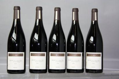 5 bouteilles SAINT JOSEPH