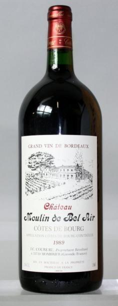 1 magnum MOULIN DE BELAIR - Côtes du Bourg...