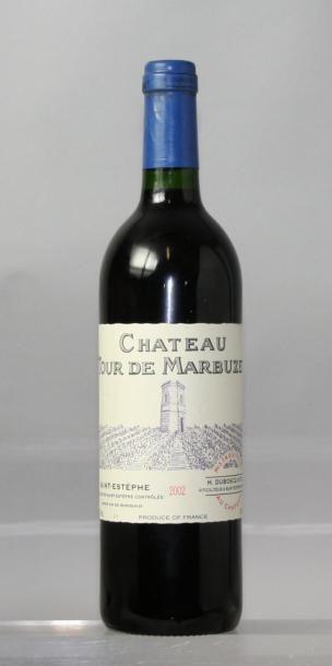 1 bouteille CHÂTEAU LA TOUR DE MARBUZET CBE...