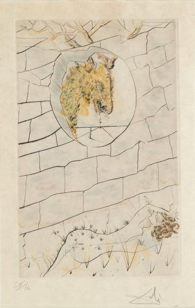 Salvador DALI (1904-1989) My Beloved is Like a Roe Gravure en couleurs Signée en...