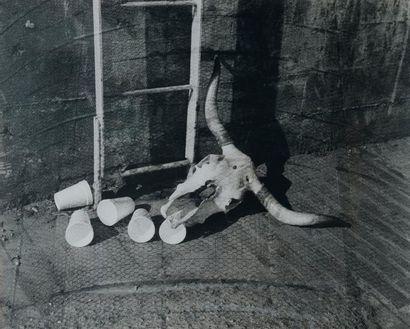 HANNAH COLLINS (NÉ EN 1956) Western World, 2002 Photographie - tirage argentique...