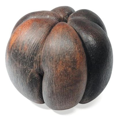 Exceptionnelle coco fesse triple. H_25 c...