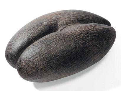 Coco fesse allongée H_41 cm