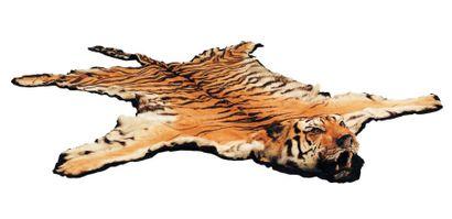 Peau de tigre, vers 1930 Le permis CITES...