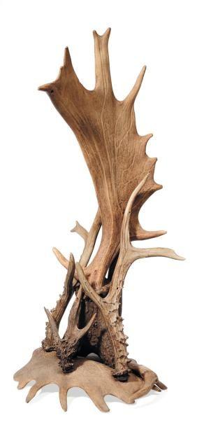 Élégante sculpture en bois de cerf.