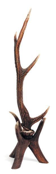 Bois de cerf décoratif. H_62 cm